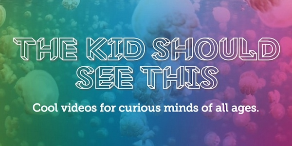 Looking for the Best Website to Discover Perfect Videos for Speech Therapy? Look No Further!