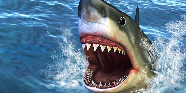 5 Reasons Why a Shark Would Not Make a Good Speech-Language Pathologist