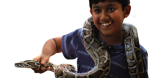 5 Reasons Why Having a Real Snake in Speech Therapy Would Be Awesome